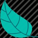 spring, leaf, flower, green, flora