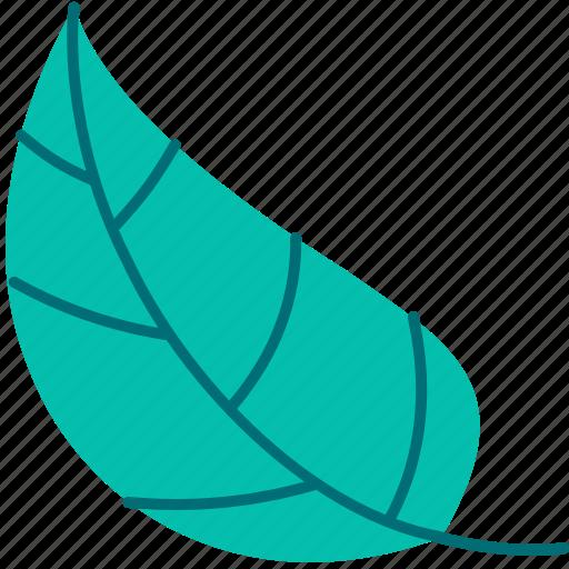 Spring, leaf, flower, green, flora icon - Download on Iconfinder