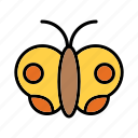 butterfly, insect, nature, spring icon
