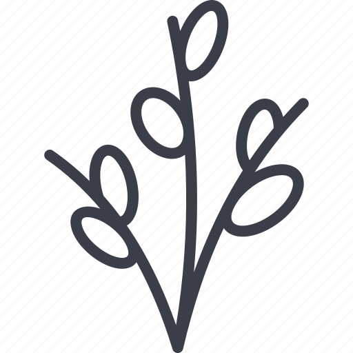 branch, easter, kidney branch, tree icon