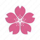 eco, plant, ecology, flower, sacura