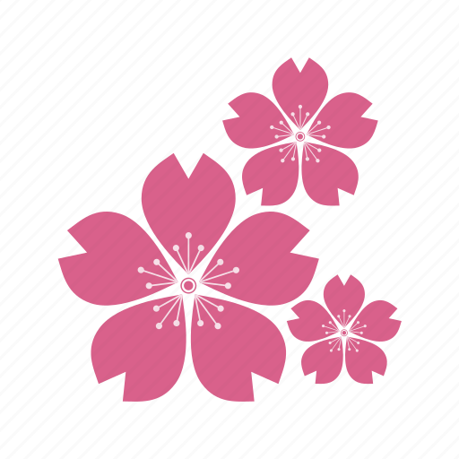 culture  eco  ecology  flower  flowers  plant  sakura  sakuraculture icon cherry blossom vector png cherry blossom vector design