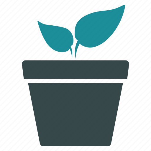 environment, flower, growth, organic, plant, pot, project icon
