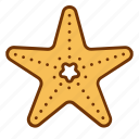 animal, fish, life, nature, sea, star, starfish