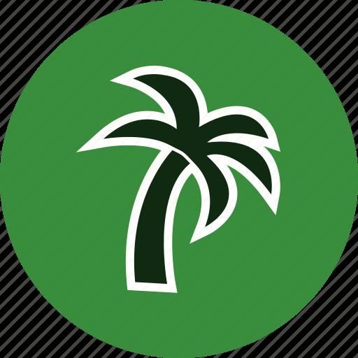 island, palm, plant, tree icon
