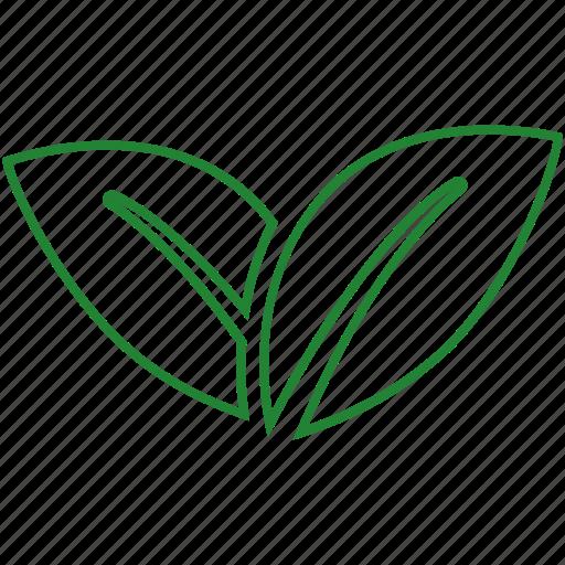 eco, ecology, green energy, leaf icon
