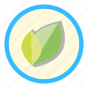 garden, green, greengrocery, leaf, nature icon