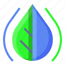 ecology, leaf, nature, water