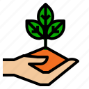 ecology, hand, nature icon