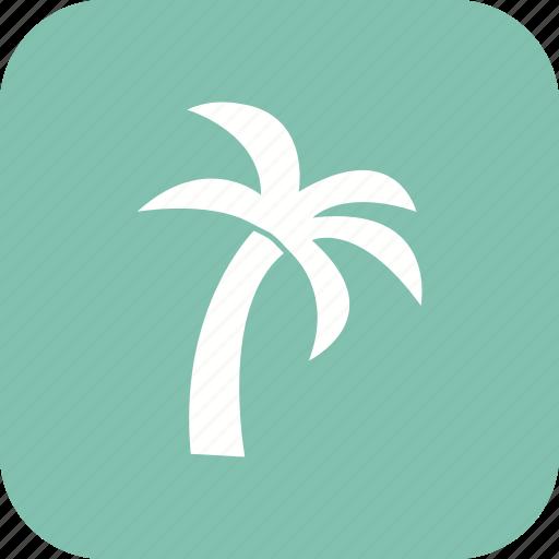 island, nature, palm, tree icon