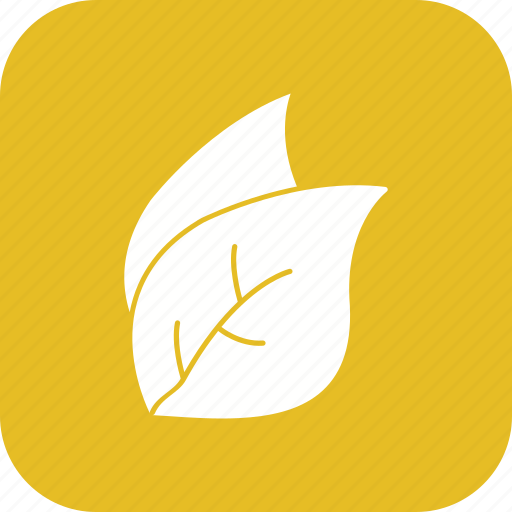 eco, leaf, leaves, nature icon