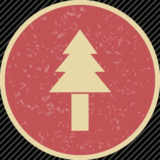 pine tree, plant icon