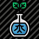 flask, leaf, ecology, test, tube