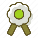 badge, certification, medal icon
