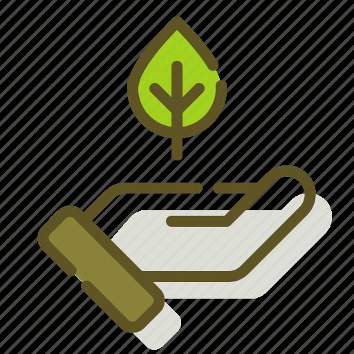 care, leaf, nature, plant icon