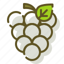 food, fruit, grapes, organic icon