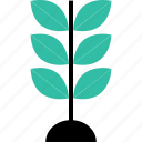 ecology, environment, growing, leaf, nature, plant icon