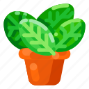 ecology, environmental, leaf, nature, plant, pot icon