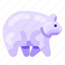 animal, bear, ecology, environmental, nature, polar icon