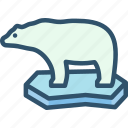 bear, global warming, iceberg, polar