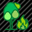 burn, fire, forest, tree