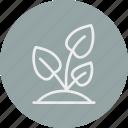 ecology, nature, plant icon