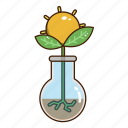 ecology, green, growth, nature, plant