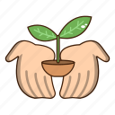 care, ecology, green, plant, sprout