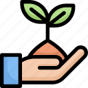 eco, ecology, energy, green, growth, nature, plant on hands