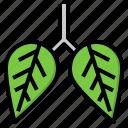 anatomy, leaf, lung, organ, pulmonology icon
