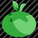 ecology, environment, food, fruit, green, nature, tomato