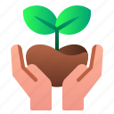 ecology, enviroment, forest, green, leaf, save, tree