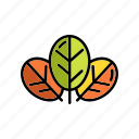 eco, green, leaves, nature, plant, seasons icon