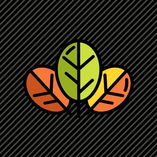 eco, green, leaves, nature, plant, seasons icon