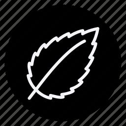 ecological, ecology, energy, green, leaf, plant, tree icon