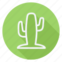 cactus, ecological, ecology, energy, environment, green, nature icon