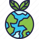 ecology, environment, plant, earth