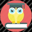 bird, owl, owl with book, study, wild icon icon
