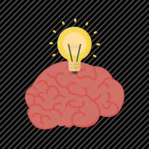 Brain, brainstorm, education, genius, head, idea, knowledge icon - Download on Iconfinder