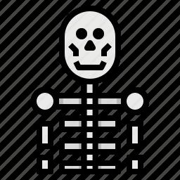 anatomy, bone, class, education, scienc, skull icon