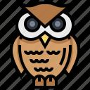 animal, bird, owl, wisdom icon