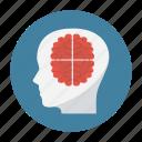 brain, creative, idea, innovation, mind