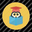 degree, diploma, education, hat, owl icon