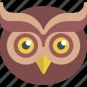 education, owl icon
