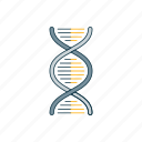 biology, color, dna, medicine icon