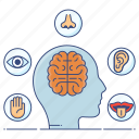 activities, brain feedback, brain response, five senses, sensation, sensory, sensory activities icon