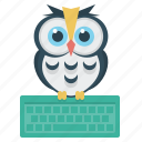 e-learning, education, keyboard, online, owl icon