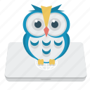 e-learning, laptop, notebook, owl icon
