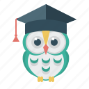 owl, education, wise, student, student cap