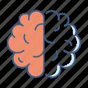 brain, creative, intelligence, mind, think, thinking